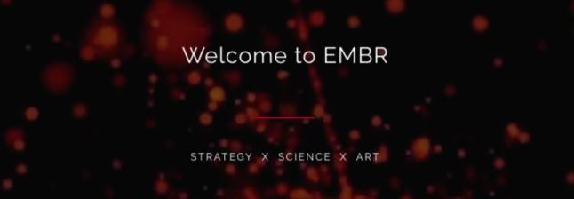 EMBR Group