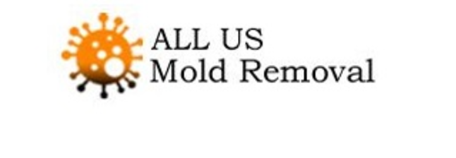 ALL US Mold Removal & Remediation - Plano TX